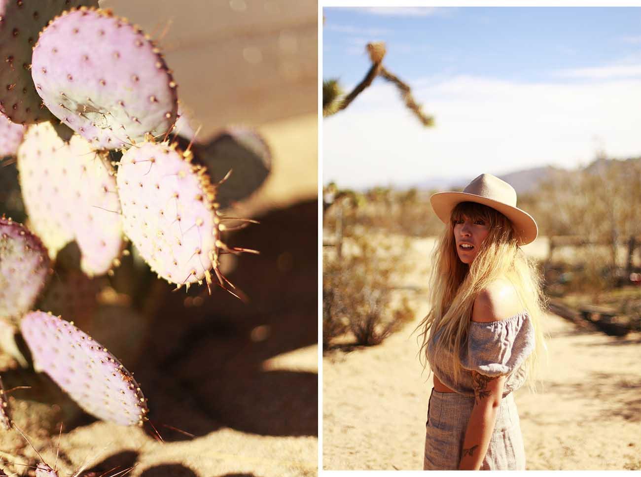 cactusjt