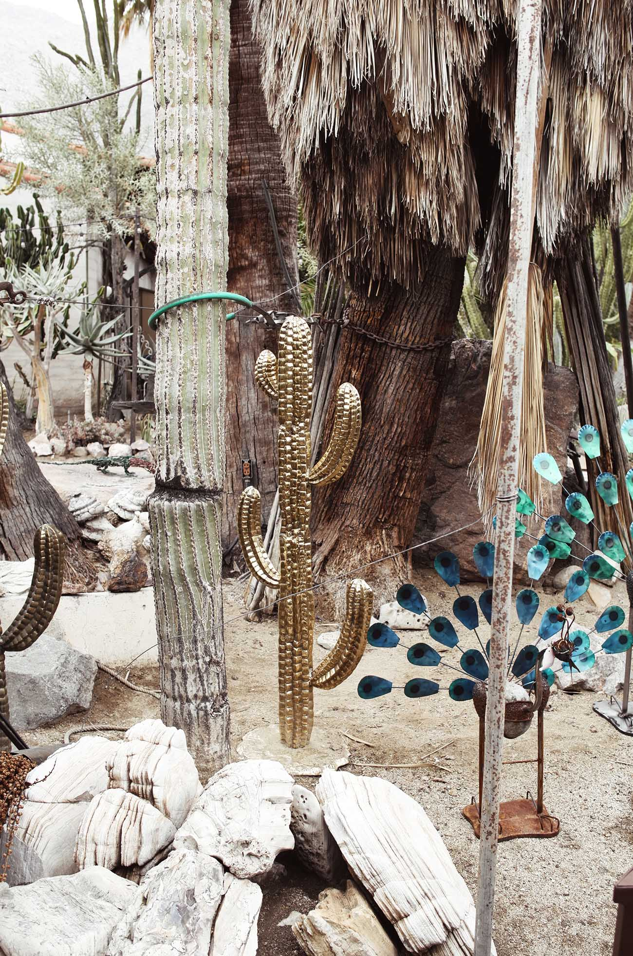 golden-cactus