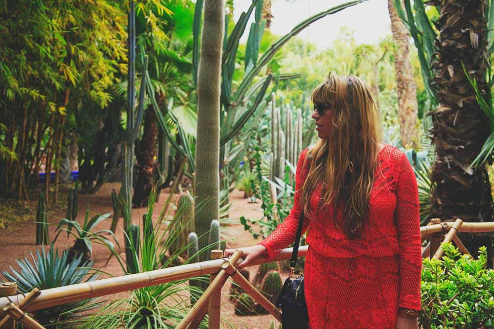 blogger jardins cactus