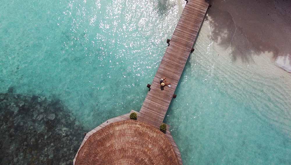 parrot bebop jetty
