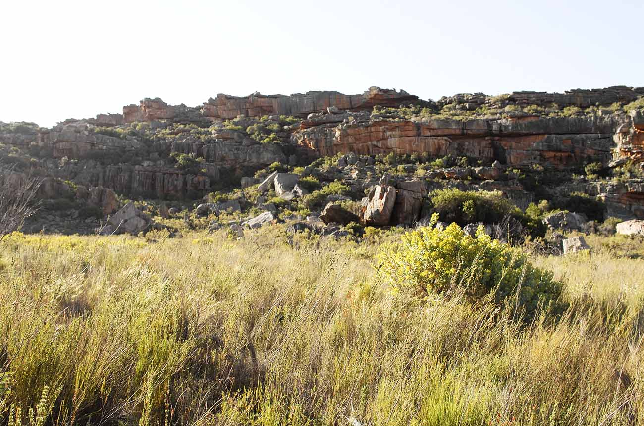 cederberg-mountains